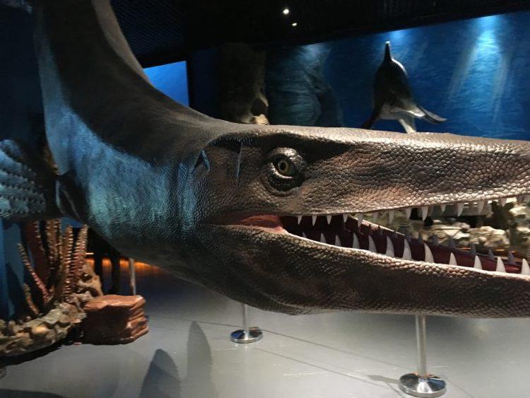 インスタ映えするウラジオストク水族館の巨大モニュメント
