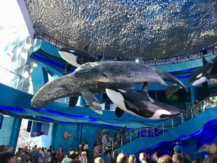 ウラジオストク 水族館入り口すぐの巨大クジラのモニュメント