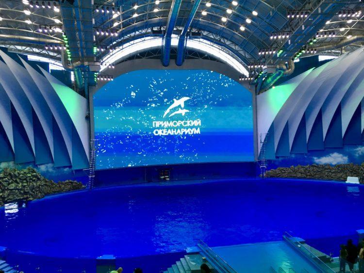 ウラジオストク 水族館のイルカショーの開演前