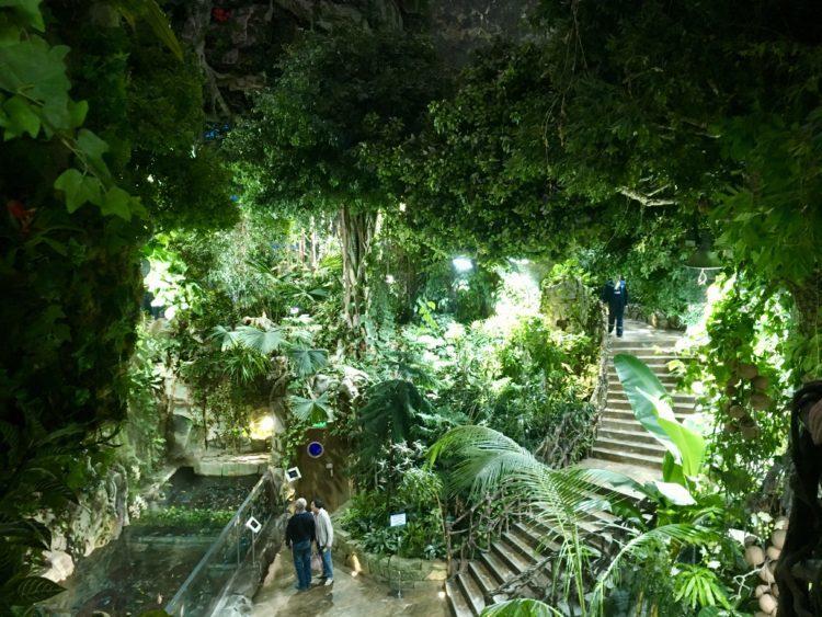 インスタ映えするウラジオストク水族館。実は植物園もある