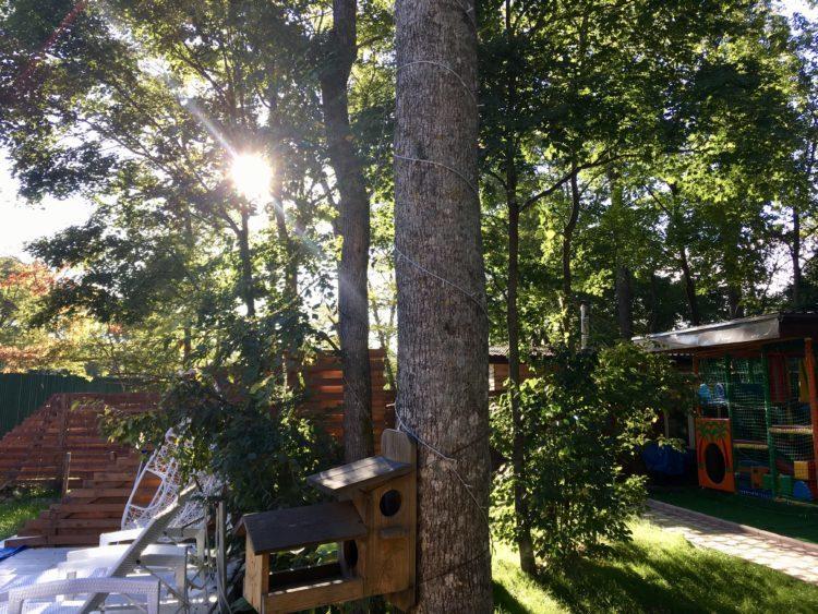 ウラジオストクの一軒家Sofi Platinum-1 Pool Villa & SPAをAirbnb(エアビー)で予約、宿泊時の庭の風景
