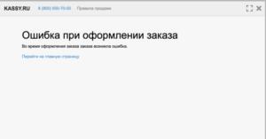 ウラジオストク国立サーカス決済エラー画面