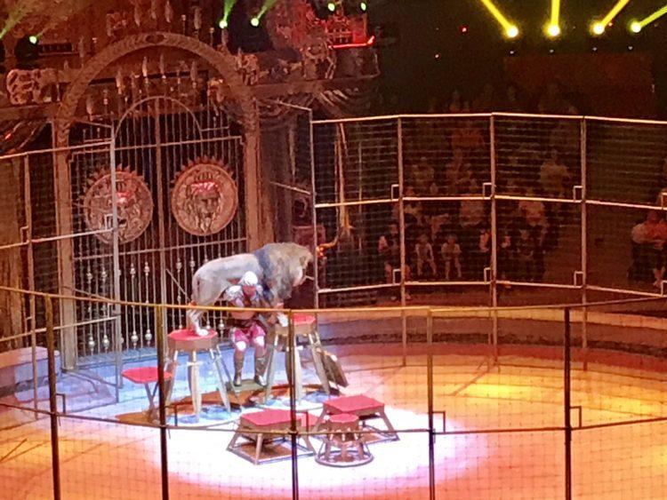 ウラジオストクサーカスでライオンを持ち上げるサーカス団員