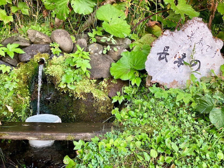 利尻島観光協会もおすすめの温泉と食事が評判の旅館雪国の温泉の敷地内の湧き水、長寿の泉