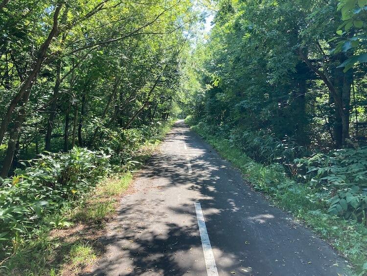 折りたたみ自転車で利尻島一周 観光スポット&見どころ 姫沼から野塚展望台へ向かう利尻島サイクリングロード
