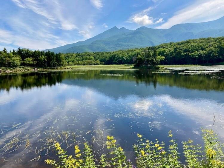 知床五湖のトレッキング