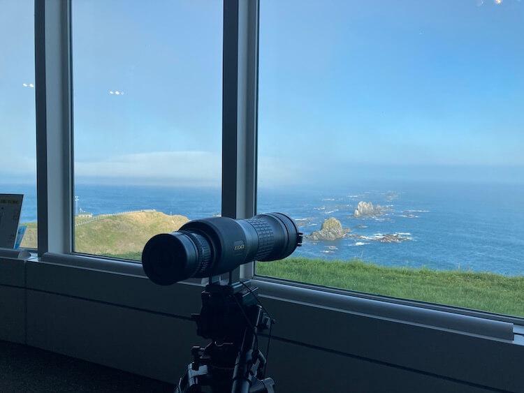 襟裳岬 風の館ではゼニガタアザラシを見ることができる