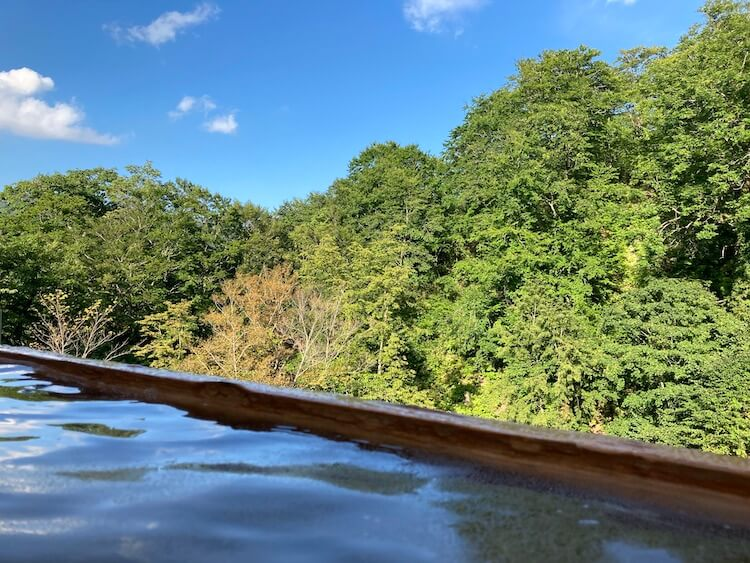 湯巡り日本一周Nバン車中泊25湯目 二股ラヂウム温泉