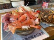 苫小牧の大人気海鮮レストラン マルトマ食堂のマルトマ丼とホッキカレーのガラナセット