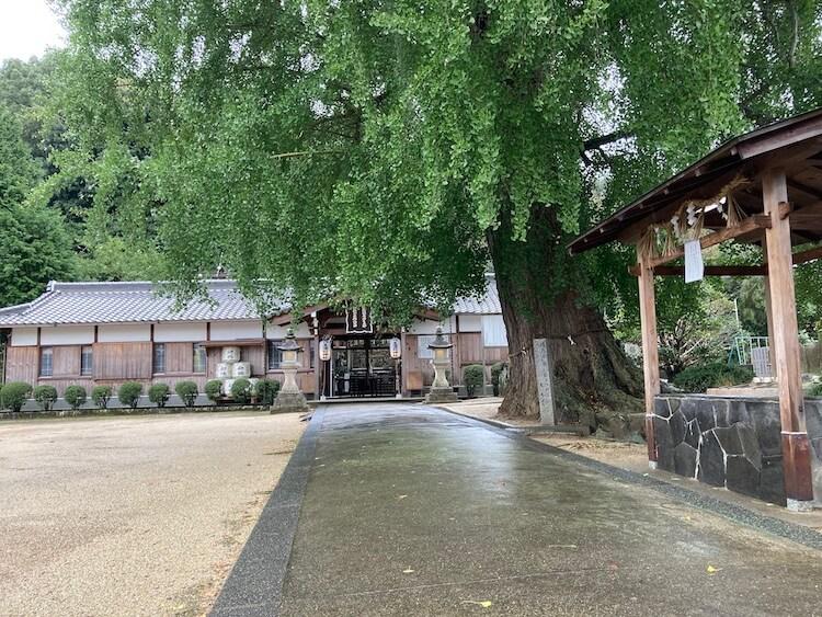 四国お遍路のお礼参り!高野山参拝のルート・順序 その2 丹生酒殿神社の銀杏