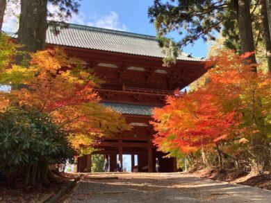 紅葉が見頃の高野山の画像をひたすらアップする 紅葉の高野山おすすめスポットその1 高野山大門