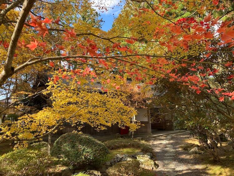 紅葉が見頃の高野山の画像をひたすらアップする 紅葉の高野山おすすめスポットその2 霊宝館