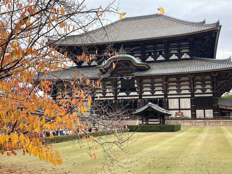 日本一周Nバン車中泊56日目 東大寺大仏殿
