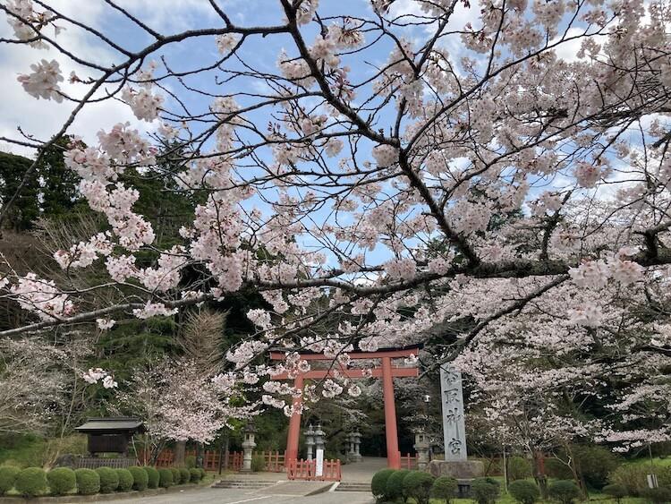 日本一周無事ゴール!旅のスタート3/22はまだ桜が咲きはじめだったのに、すっかり新緑に。