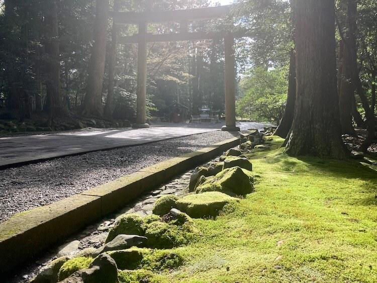 新潟随一のパワースポット弥彦神社の鳥居