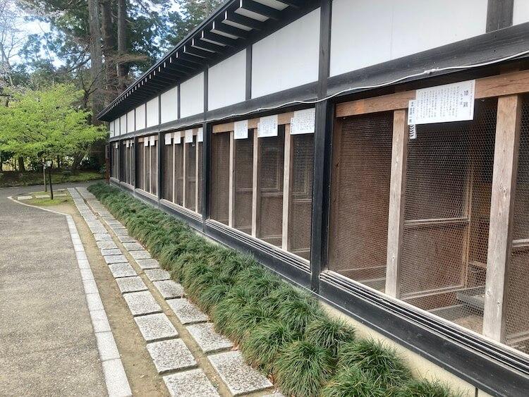 新潟随一のパワースポット弥彦神社「彌彦神社日本鶏の会」の鶏舎