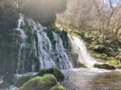 ぱっと見は滝、実は湧水。元滝伏流水のマイナスイオンで癒やされる