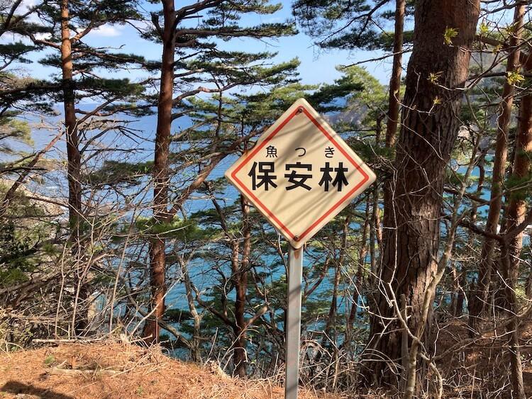 本州最後の秘境!本州最東端 トドヶ崎行く時知っておきたい4つの事 魚つき保安林(うおつきほあんりん)の看板の意味をはじめて知る