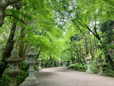 日本一周無事ゴール!旅の安全祈願をした香取神宮へお礼参り。