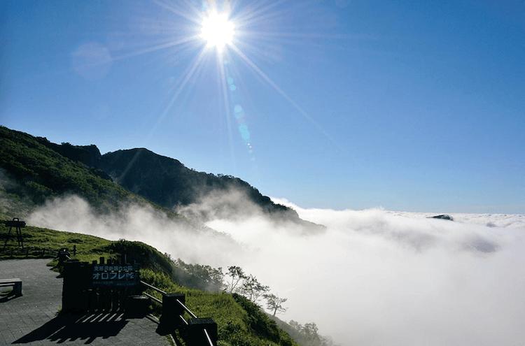 登別クマ牧場のクマと弁慶岬のエゾジカで動物ざんまい 雲?霧の中で何も見えないオロフレ峠
